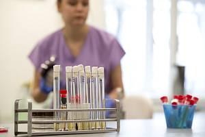 Testy na koronavirus. Ilustrační foto.