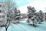 Sníh v Bechyni.