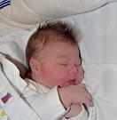 Sára Rybaříková z Jistebnice. Na svět přišla 4. prosince 2018 ve 2.50 hodin. Vážila 3720 gramů, měřila 52 cm a doma sestřičky Elenu, Lindu a Terezii.