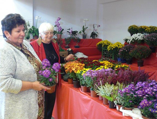 Na tradiční podzimní trhy se můžete dojet podívat do Tábora, Soběslavi nebo Chotovin.