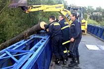 Před dvěma lety pomáhali hasiči i bagrista vytahovat popadané stromy  z řeky.