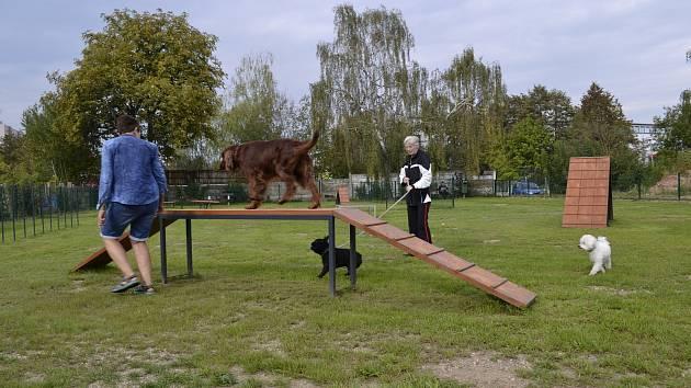 Ve středu 19. září došlo k slavnostnímu otevření vůbec prvního psího parku v Táboře.