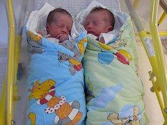 TOMÁŠ a DAVID KOUKALOVI Z VOTIC.  Narodili se 21. září, Tomáš v 8:15 hodin a jeho bráška David v 8:16 hodin. Tomášovi naměřili 46 cm a navážili 2600 g. Davidovi naměřili 48 cm a navážili 2570 g. Na dvojčátka se doma těší i jejich pětiletý bráška Zdeněk.