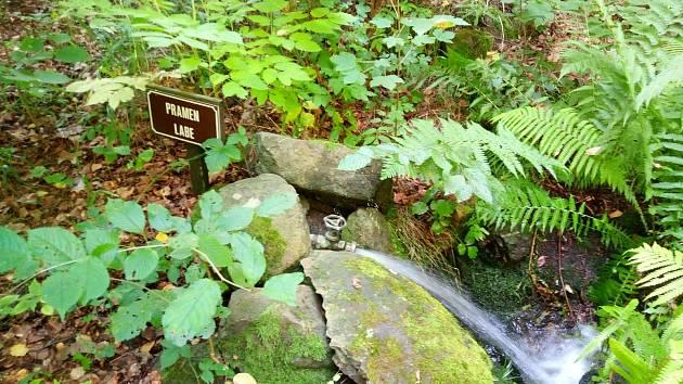 Potůček v botanické zahradě přivádí vodu do jezírka.