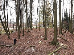 DNEŠNÍ PODOBA. Klub Přátel historie pracuje na úpravách bývalé středověké tvrze. Loni vykáceli stromy a keře.