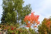 Pro mnohé je podzim nejkrásnějším obdobím roku.
