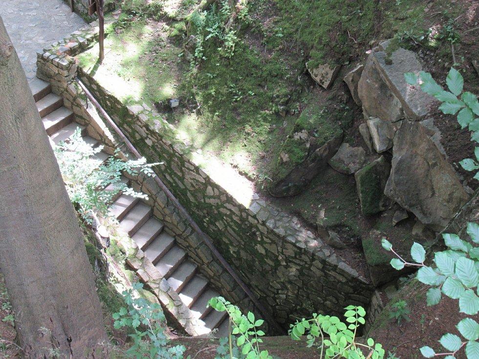 V Chýnovské jeskyni zimuje několik druhů netopýrů (velký, vodní, ušatý, černý), dominantním druhem je netopýr řasnatý.