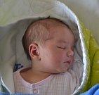 Nela Douchová z Tábora. Na svět přišla 30. ledna v 6.20 hodin. Vážila 3450 gramů, měřila rovných 50 cm a doma už má osmiletou sestřičku Nikolku a čtyřletého brášku Marečka.