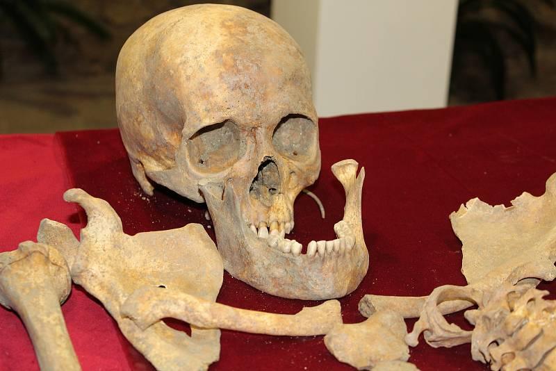 Mimo mnoho zajímavých objevů a artefaktů z dějin Tábora od pravěku po třicetiletou válku bude lidskou stránku historie reprezentovat v nové expozici v Bechyňské bráně mladá žena zvaná Apolena.