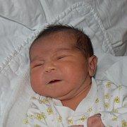Melisa Miková z Chýnova. Na svět přišla 10. února v 6.29 hodin s váhou 3120 gramů a mírou 49 cm. Je  prvorozenou dcerou  rodičů Jiřiny a Milana.
