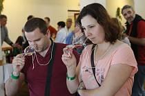 Přijďte si vychutnat lahodné víno, k poslechu zahraje cimbálovka. Ilustrační foto.