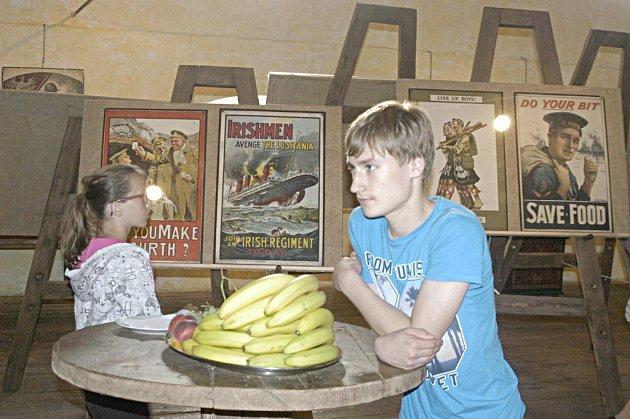 Obrazárna Špejchar vystavuje válečné plakáty.