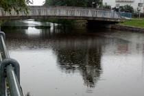 Aktuální stav řek Nežárky a Lužnice ve Veselí nad Lužnicí.