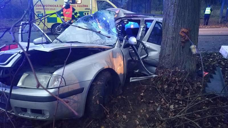 Vážná dopravní nehoda se v pondělí 11. listopadu stala u Sudoměřic u Bechyně.
