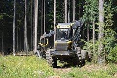 Táborská Správa lesů zápasí s rozepřemi mezi zaměstnanci a novým jednatelem, kůrovcem i s novou vizí hospodaření.