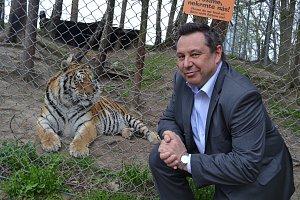 Majitel táborské zoo Evžen Korec s tygrem.