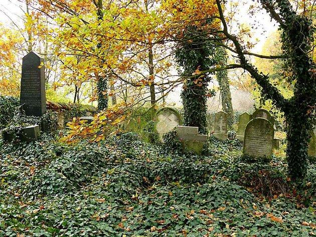 Všechny židovské hřbitovy má ve správě společnost Matana, která o ně pečuje . Jeden z největších se nachází v Tučapech. Jeho rozloha je kolem 1500 metrů čtverečních. Poslední pohřeb se zde konal roku 2000, poté bylo pohřební právo zrušeno.