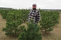 Petr Holec povýšil výběr vánočního stromku na zážitek pro celou rodinu.