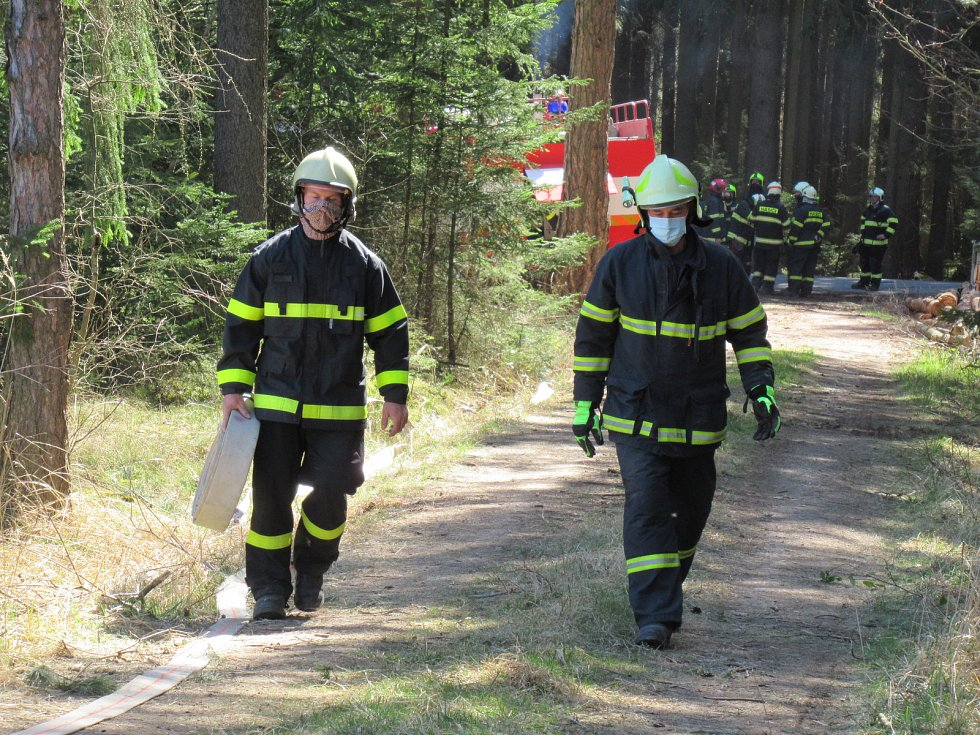 Lesní porost hořel ve středu 8. dubna mezi obcemi Myslkovice a Brandlín na Táborsku.