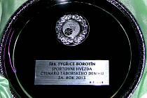 Trofej pro Sportovní hvězdu čtenářů Táborského deníku.