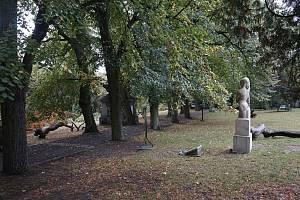 Lipová alej v parku pod Kotnovem.