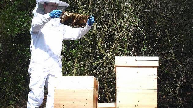 Bez včelařů nebude med. To si uvědomuje i místní organizace ČSV, a proto se snaží do svých řad přilákat mladou krev.