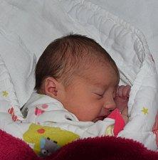 Julie Brothánková z Lukavce. Narodila se jako první dítě v rodině 14. února ve 3.02 hodin. Vážila 3270 gramů, měřila 52 cm.