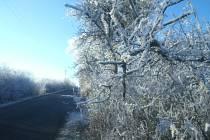 Zima přinese v příštích dnech silné mrazy.
