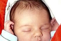 NATÁLIE SEKALOVÁ Z TÁBORA. Poprvé pohlédla na svět 1. září v 15.07 hodin. Prvorozená dcera rodičů Petry a Tomáše vážila 3140 g, měřila 49 cm.
