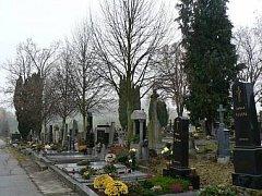 Ilustrační foto. Lípy na mladovožickém hřbitově
