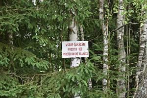 Pyrotechnická očista v chráněné krajinné oblasti Brdy opět pokračuje. Po nucené pauze kvůli onemocnění COVID-19 se do určených oblastí vrátili vojáci 15. ženijního pluku, kteří tady vyhledávají starou munici či její zbytky.