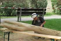 Řezbáři vloni vytvořili sérii dřevěných soch, které nyní zdobí plánská veřejná prostranství.