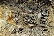 Objevená studna.