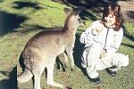 Cestovatelova dcera Veronika s jedním z dalších symbolů Austrálie – klokanem. Na Pebbly Beach byli klokani velice krotcí a důvěřiví