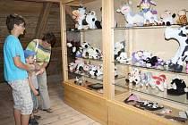 Muzeum v Halži přišlo do letošní sezony s novinkou, expozicí figurek krav.