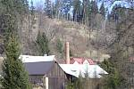 Březnové předjaří pod Českým lesem