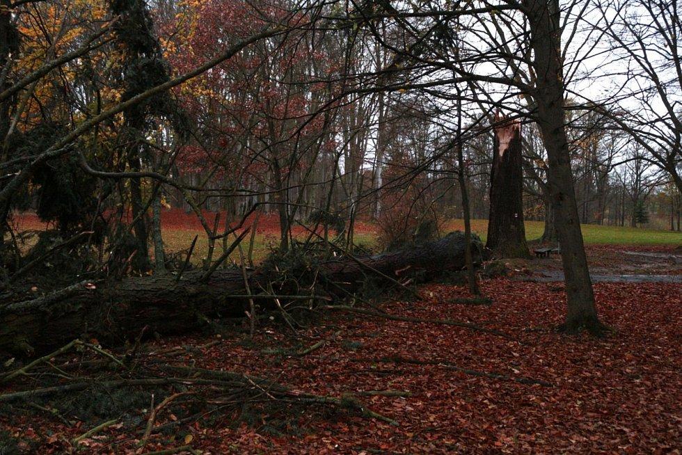 Veliké škody napáchaly poryvy silného větru v zámeckém parku v Chodové Plané.