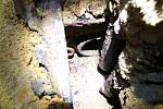 Místo bývalé sklárny a nové objevy v zaniklém Frauentálu na Tachovsku.
