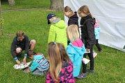 Z pikniku v tachovském parku