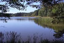 Rybník Fučka v lesním království u Tuněchod