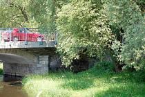 NĚKTERÉ STROMY BUDOU SMÝCENY. Jedním z protipovodňových opatření bude také částečné odstranění porostu v říčním korytě u mostu na Třídě Míru v Tachově.