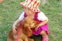 Psy už většinou nechováme kvůli hlídání obydlí, ale stali se z nich rodinní miláčci. Jejich chov v domácnostech je ale zpoplatněn a řídí se obecně závaznou vyhláškou měst a obcí.