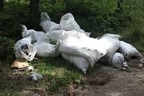 ZHRUBA dvacet pytlů s odpady někdo vyvezl do lesa za Stříbrem, v místě je však sběrný dvůr.