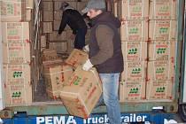 Téměř čtyři tisíce padělků dětské obuvi s ochrannou značkou Hello Kitty zabavili tachovští celníci při kontrole kontejnerové zásilky dětské obuvi