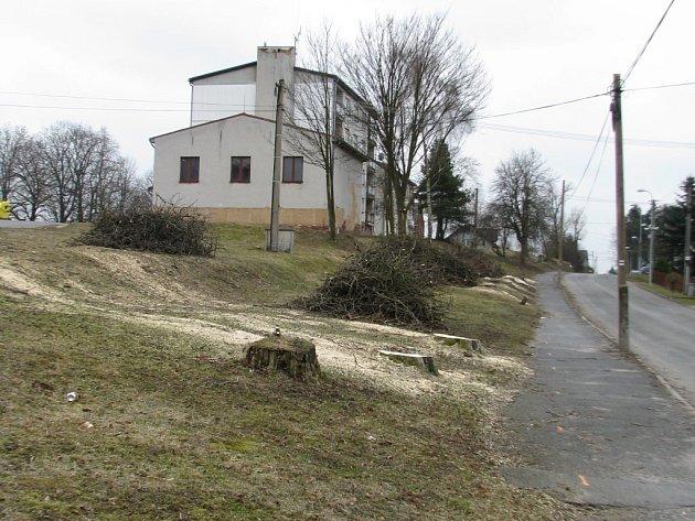 Novou kanalizaci bude mít část obce Staré Sedliště. Ustoupit jí musela alej vzrostlých stromů.