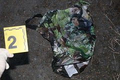 Utýraného psa našly tři dívky z zámeckém parku v Boru