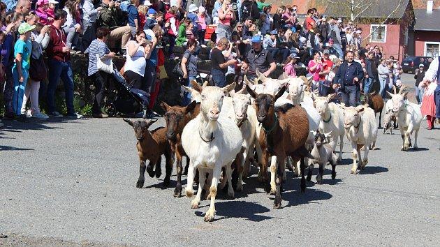 Stovky lidí sledovaly nedávno zavedenou velikonoční tradici