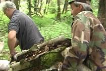Záběry z filmu Slatina.