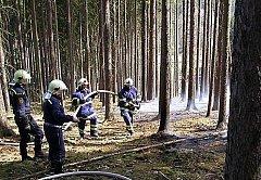 Lidé svatého Floriána – hasiči z Konstantinových Lázní zasahovali při lesním požáru u Strahova.