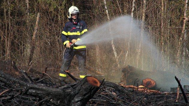 Lesní hrabanka, tráva a klestí hořelo na pasece u Řešanova nedaleko Týnce na Tachovsku.